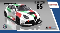 2020-2020 SIM Racing cars---2020 TCR Europe SIM cars new, 65 Kevin Ceccon